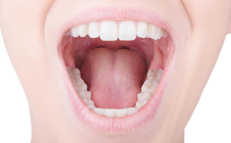 Professionelle Zahnreinigung Pzr
